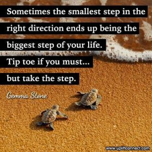 Sometimes the smallest step in the right direction ends up being the biggest step of your life. Tip toe if you must...but take the step -- Gemma Stone