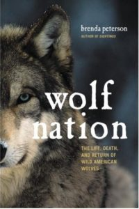 Wolf Nation by Brenda Peterson book cover image