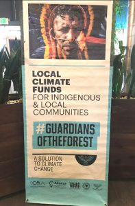 poster - local climate funds for indigenous & local communities