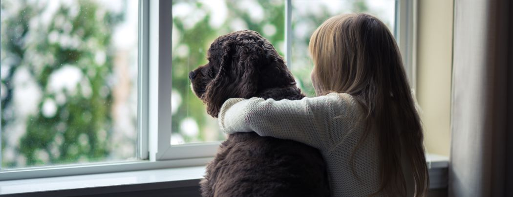 energy saving windows - Little girl and her dog looking out the window