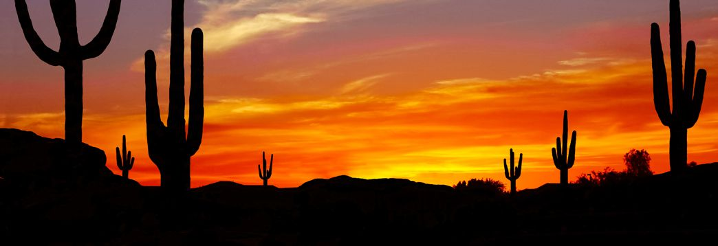 financial sustainability - Arizona sunrise