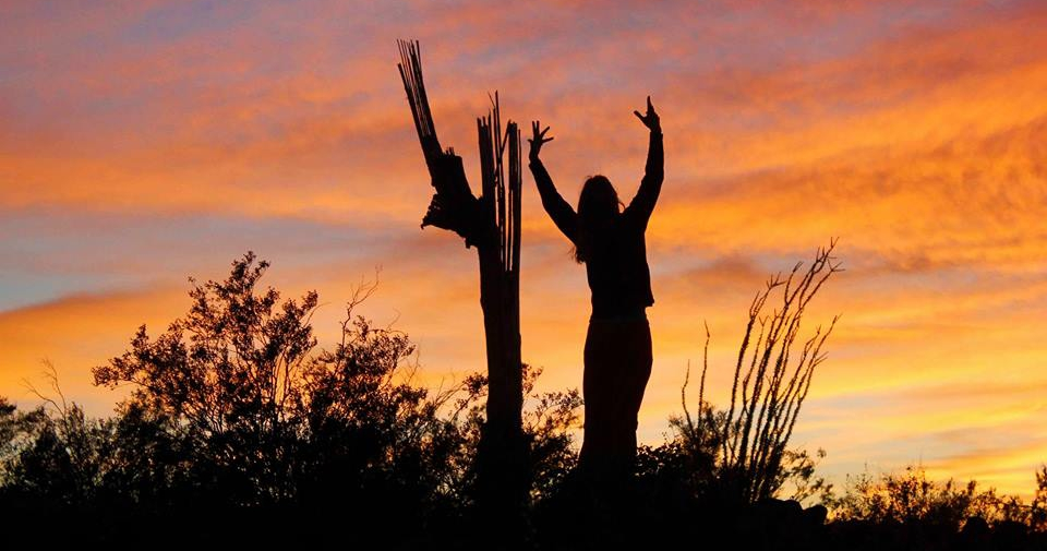 woman standing next to saguaro at sunset