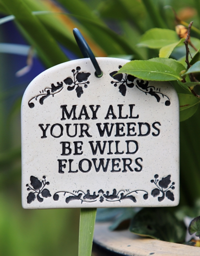 "plant with tag that says ""may all your weeds be wild flowers"""