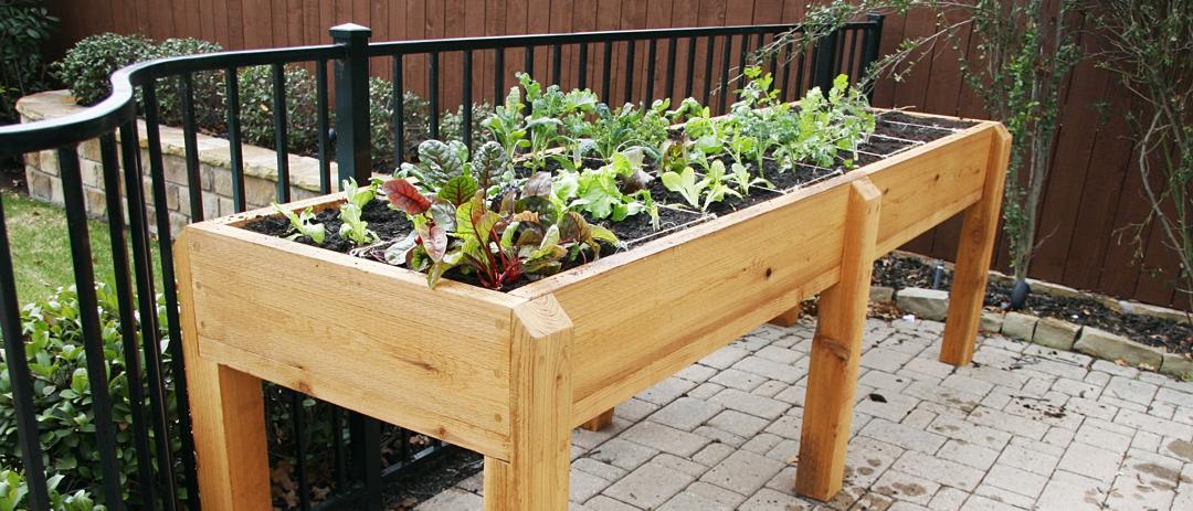 Raised urban garden on balcony