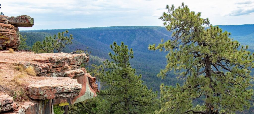 view of the Mogollon Rim, Arizona