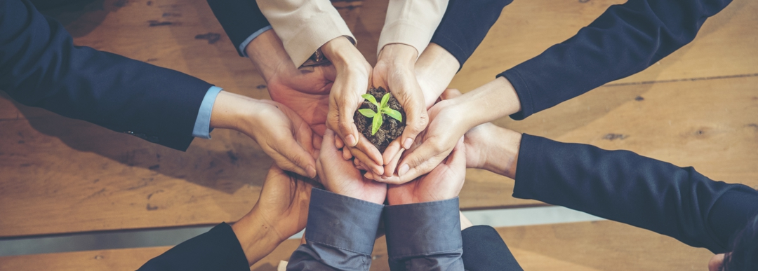 Green Business Meeting. United Partners Team with hands together holding plant green trusted friends. Hands stacked Holding with sustainability partners. Trust business authentic of people.