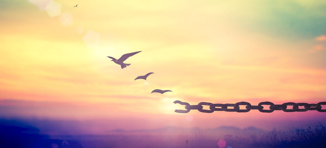 Silhouette of bird flying and broken chains at autumn mountain sunset background