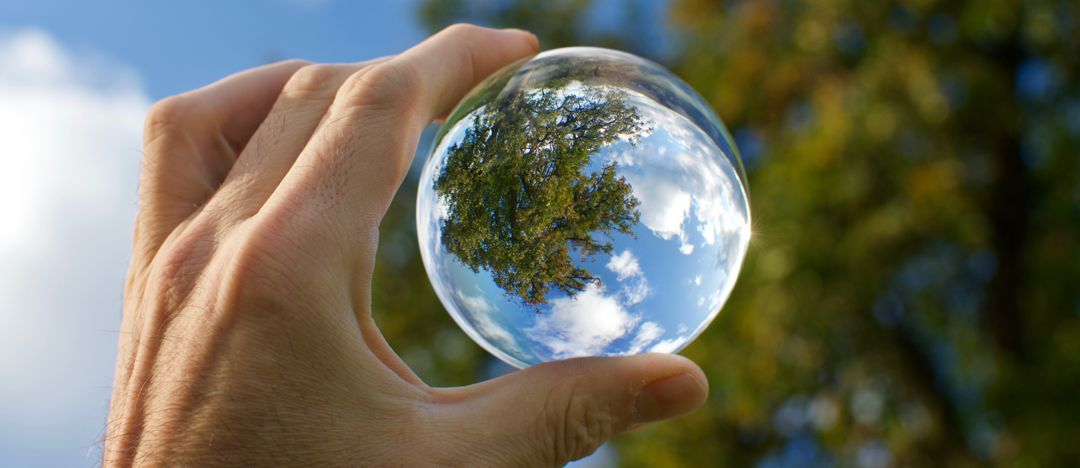 hand holding glass lens toward the sky and trees