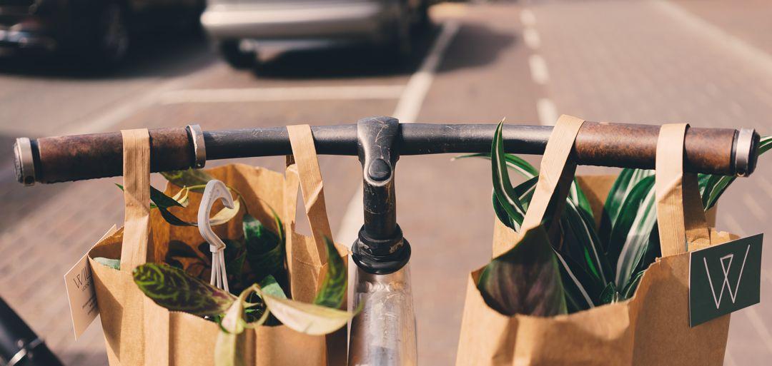 groceries in paper bags hanging on bicycle handlebars