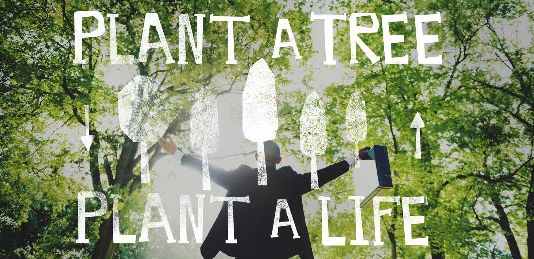 Plant a Tree Plant a Life