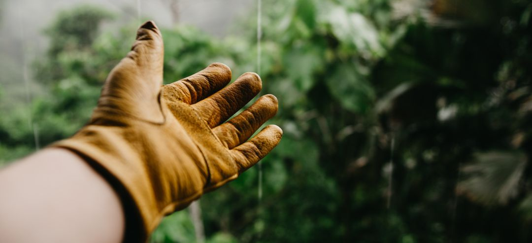 gardening gloved hand reaching toward drizzle of water