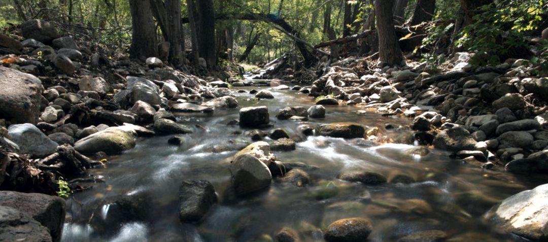 creek flowing over rocks